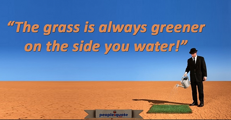 The grass is always greener on the side you water